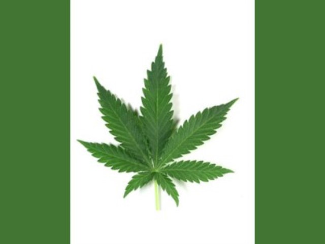 thc-and-cbd Canada Fort Macleod